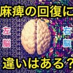 脳出血後遺症のリハビリ|右脳と左脳で麻痺の回復に違いはある?